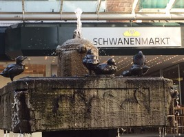 Brunnen Schwanenmarkt Krefeld, Markus Ottersbach